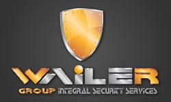 Diseño de Página Web para Wailer Group